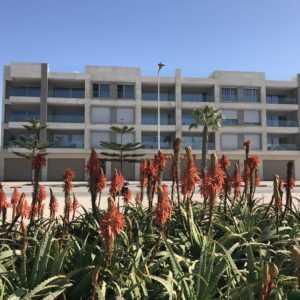 Immeubles en vente à Essaouira