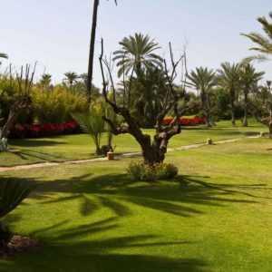 Terrains en vente à Marrakech