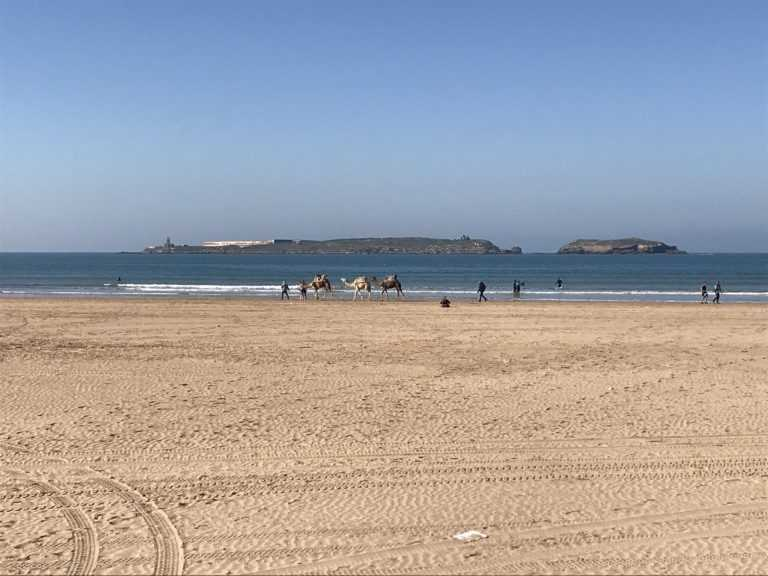 Restaurants en Location Gérance à Essaouira