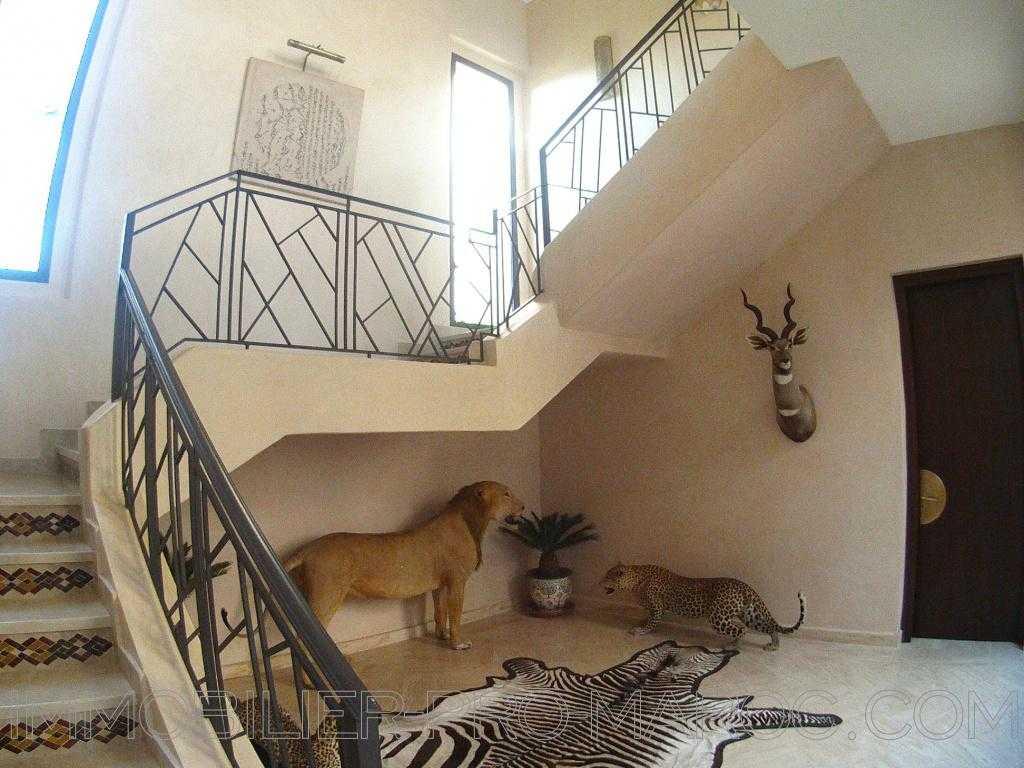 Villa Surface du Terrain 14 000 m²
