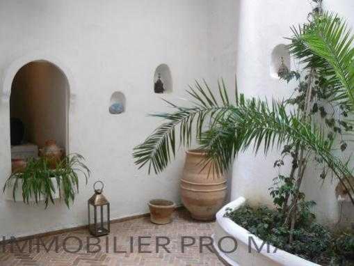 Riad meublé 3 chambres terrasse
