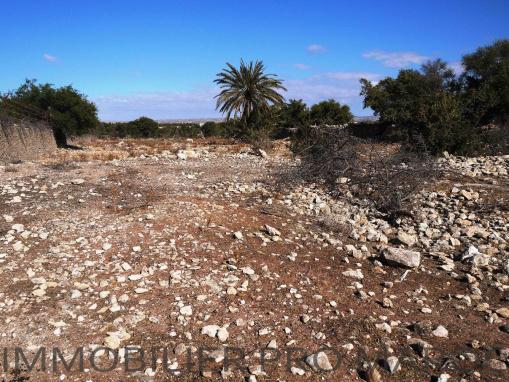 Très beau terrain titré morcelable en bord de route à 15mns d'Essaouira