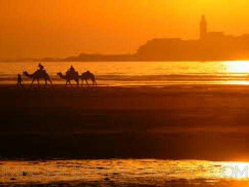 terrain de 3159m2 en première ligne; zone R+3, à Essaouira