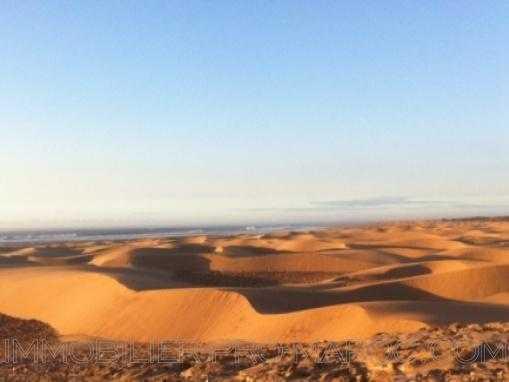 parcelles de 6600 M² a 17 895m2 vue mer sur la plage à qlqs Km au Nord d'Essaouira.