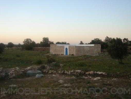 TERRAIN 12000m² à 15 km au nord d'Essaouira avec petite maison