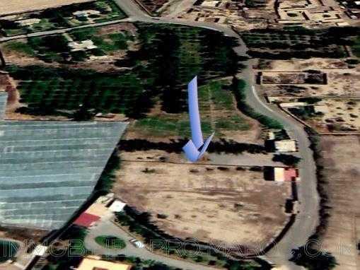 TERRAIN TITRE 4000 M² CONSTRUCTIBLE A 10 MN DE TAROUDANT
