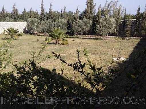 maison de campagne sans piscine, à seulement 8 kms d'Essaouira